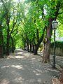 Street and park - panoramio.jpg