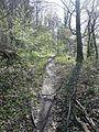 Stromberg-Schwäbischer Wald-Weg HW 10, Der Weg führt von Pforzheim über Besigheim und Backnang nach Lorch und hier über die waldreichen und einsamen Keuperhöhen des Stromberges. - panoramio (2).jpg