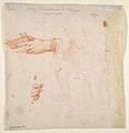 Study for a Virgin and Child with Two Angels (recto); Two Studies of Hands (verso) MET DP811185.jpg