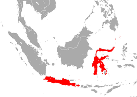 Sulawesi Horseshoe Bat area.png