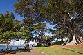 Sydney NSW 2000, Australia - panoramio (338).jpg