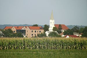 Tét - View of the centre of town from across the fields