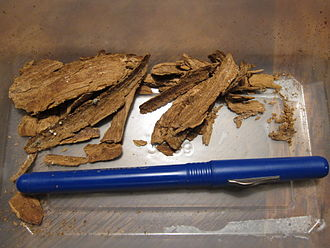Tabernanthe iboga - Bark of Tabernanthe iboga. According to users in Kinshasa, Democratic Republic of Congo, only 3 grams of shredded bark are required for a single dosage, or cup.