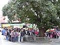 Taipei-shenkeng tree.JPG
