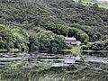 Tal y Llyn - panoramio (8).jpg