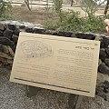 Tel Sheva 13.jpg