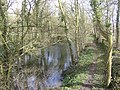 Thames and Severn Canal - geograph.org.uk - 350333.jpg