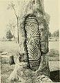 The Australian Museum magazine (1921) (20323909126).jpg