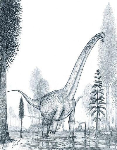 The Real Futalogkosaurus - Nima Sassani.jpg