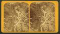 The Seven Falls, of Cheyenne Canyon, by Gurnsey, B. H. (Byron H.), 1833-1880.png