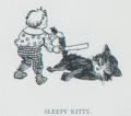 The Tribune Primer - Sleepy Kitty.png