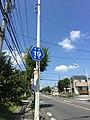 Tokyo-Prefectural road.19.jpg