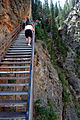 Tom Miner Stairs (3678677253).jpg
