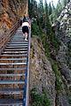 Tom Miner Stairs (3678677253).jpg
