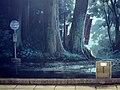 Totoro - Flickr - d'n'c.jpg