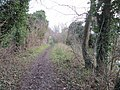 Towpath to East Challow - geograph.org.uk - 1639834.jpg