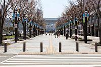 Toyama Boulevard.JPG