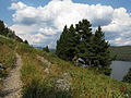 Trail Along Redfish Lake (14891543959).jpg
