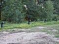 Trascianiec extermination camp 56.jpg