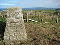 Trig point on Pentire Point - geograph.org.uk - 1525367.jpg