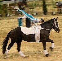 Ar Horseback Riding Tour Aruba