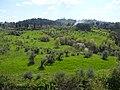 Tuscan Countryside (5986658781).jpg