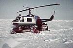 UAF seal-sniffing dogs NOAA.jpg
