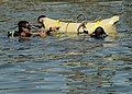 US Navy 110727-N-KB666-084 Navy Diver 3rd Class Bryan Myers, left, assists divers assigned to the Guatemala navy in lift bag procedures.jpg