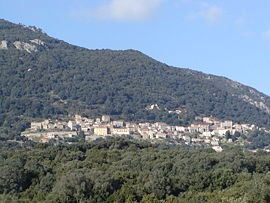 A general view of Olmeto