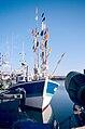 Un chalutier de pêche côtière (28).jpg