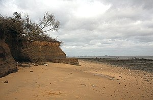 Walton-on-the-Naze - Cliff erosion, the overlying Red Crag deposit has eroded faster than the London clay base