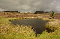 Unnamed kettle-hole lochan - geograph.org.uk - 500146.jpg