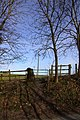 Up to the gate to Ardington - geograph.org.uk - 1761336.jpg
