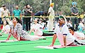 V.P. Singh Badnore and the Union Minister for Textiles, Smt. Smriti Irani performing Yoga, on the occasion of the 4th International Day of Yoga 2018, in Chandigarh (1).JPG