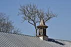 VDNKh Ventilation cap on roof of Pavilion No 48 and trees.jpg