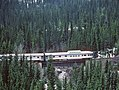VIA 1414 with the eastbound Canadian is between Yoho and Cathedral on CP's big hill from Kicking Horse Pass to Field, BC in May 1982 -- 3 photos (31431466403).jpg