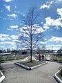 Valday, Novgorod Oblast, Russia - panoramio (1457).jpg