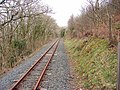 Vale of Rheidol Railway - geograph.org.uk - 713265.jpg