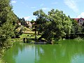 Velké Popovice, Common Pond.jpg