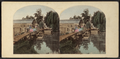 View in Sleepy Hollow. Scene of Washington Irving's 'Headless Man.', from Robert N. Dennis collection of stereoscopic views 2.png