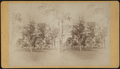View in Washington Square, by David W. Wilson.png