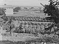 View of unidentified harvest and an industrial yard (AM 76946-1).jpg