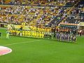 Villarreal - Fiorentina summer 2013.JPG