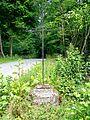 Villers-Saint-Frambourg (60), croix Saint-Rieul.jpg