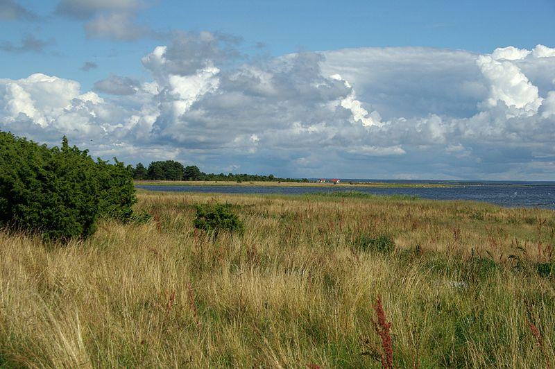 File:Vilsandi-vaade sadamale.JPG