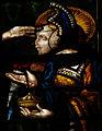 Vitraux Cathédrale d'Auch 28.jpg