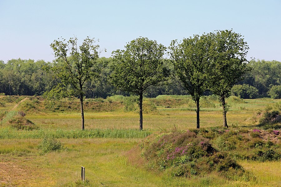 Jabbeke (province of West Flanders, Belgium): the former munition depot, now part of nature reserve Vloethemveld