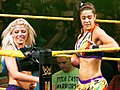 WWE NXT 2015-03-27 22-57-30 ILCE-6000 3470 DxO (16746696683) (cropped).jpg