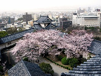 Keihanshin - Wakayama