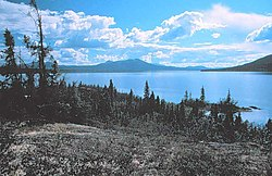 Walker Lake NPS.jpg